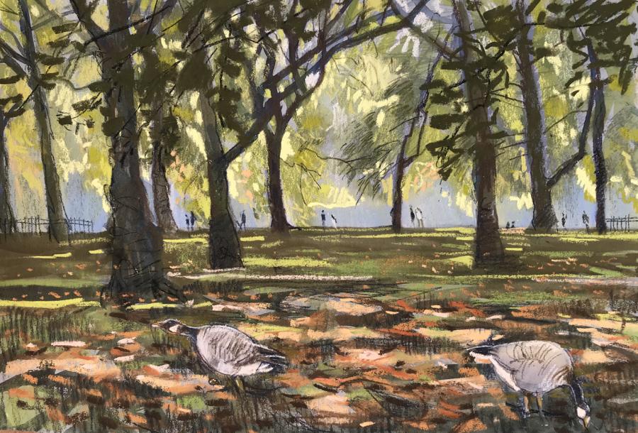 Autumn St. James's Park London