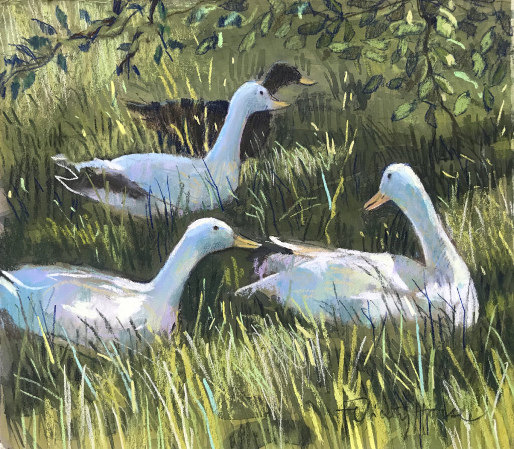 Ducks in the Orchard