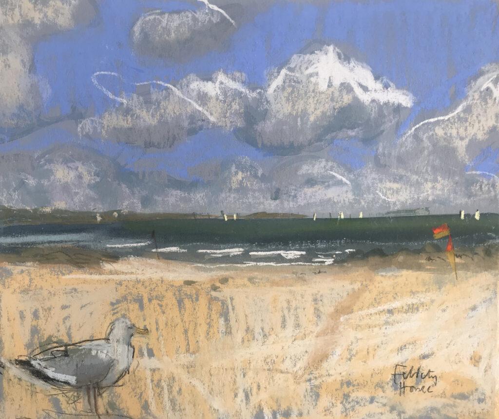 Sandbanks Seagull