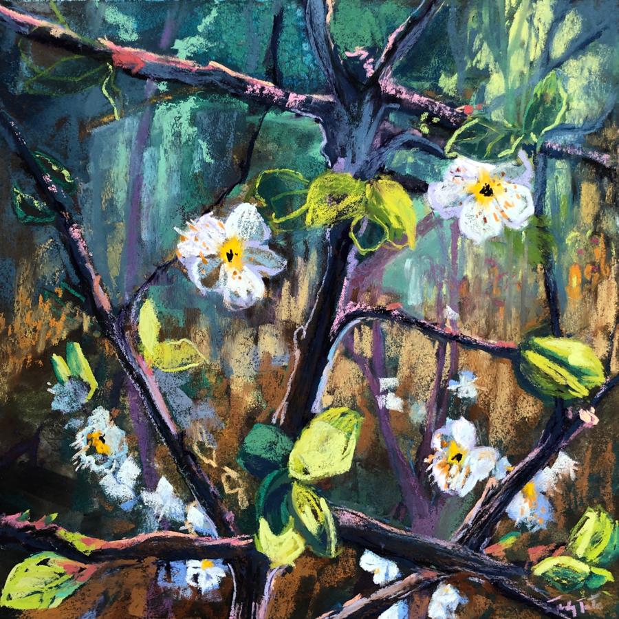 Blossom pastel