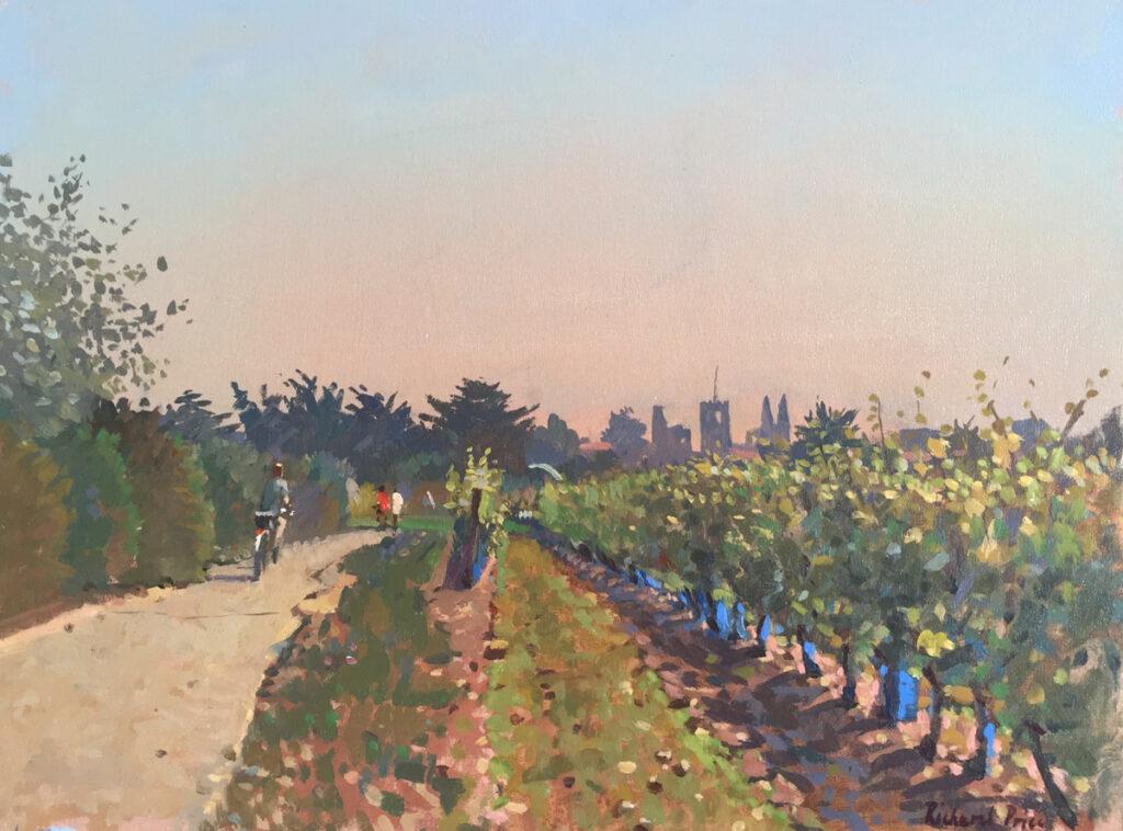Through the Vineyard, St. Martin